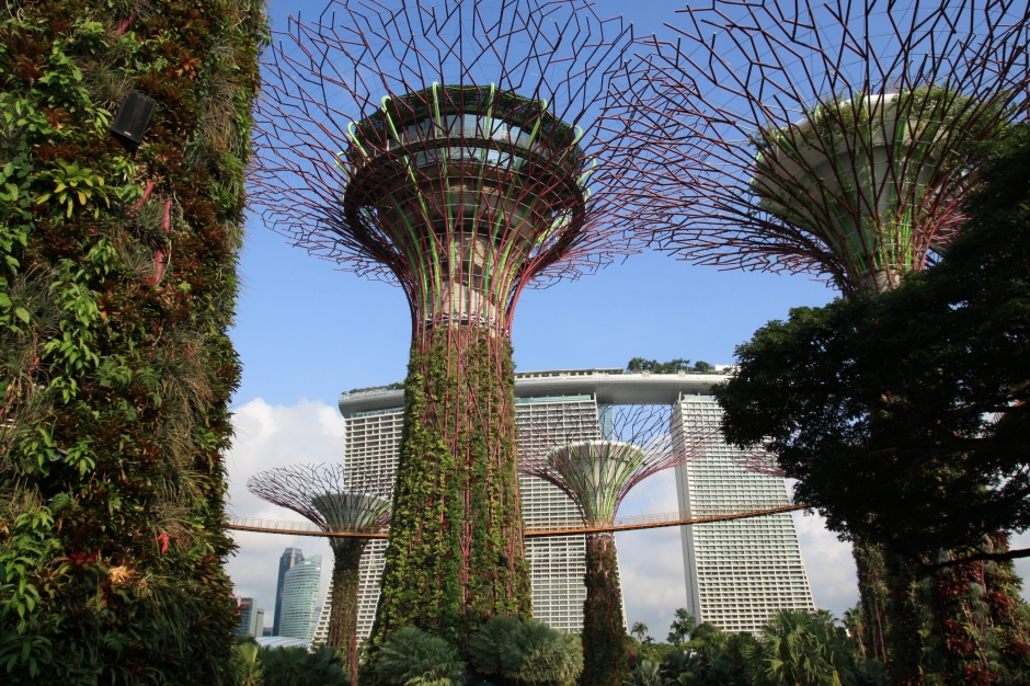 Gardens by the bay_2